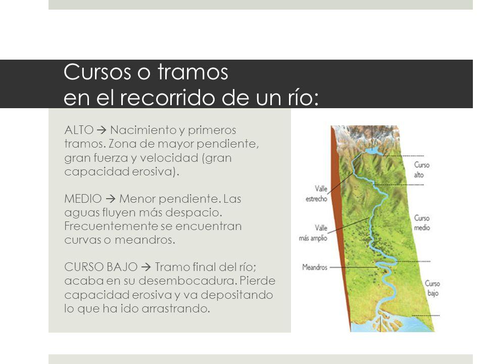 Cursos o tramos en el recorrido de un río: ALTO Nacimiento y primeros tramos. Zona de mayor pendiente, gran fuerza y velocidad (gran capacidad erosiva