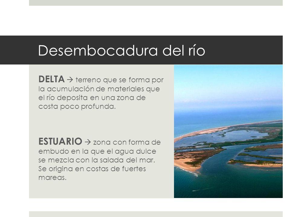 Desembocadura del río DELTA terreno que se forma por la acumulación de materiales que el río deposita en una zona de costa poco profunda. ESTUARIO zon
