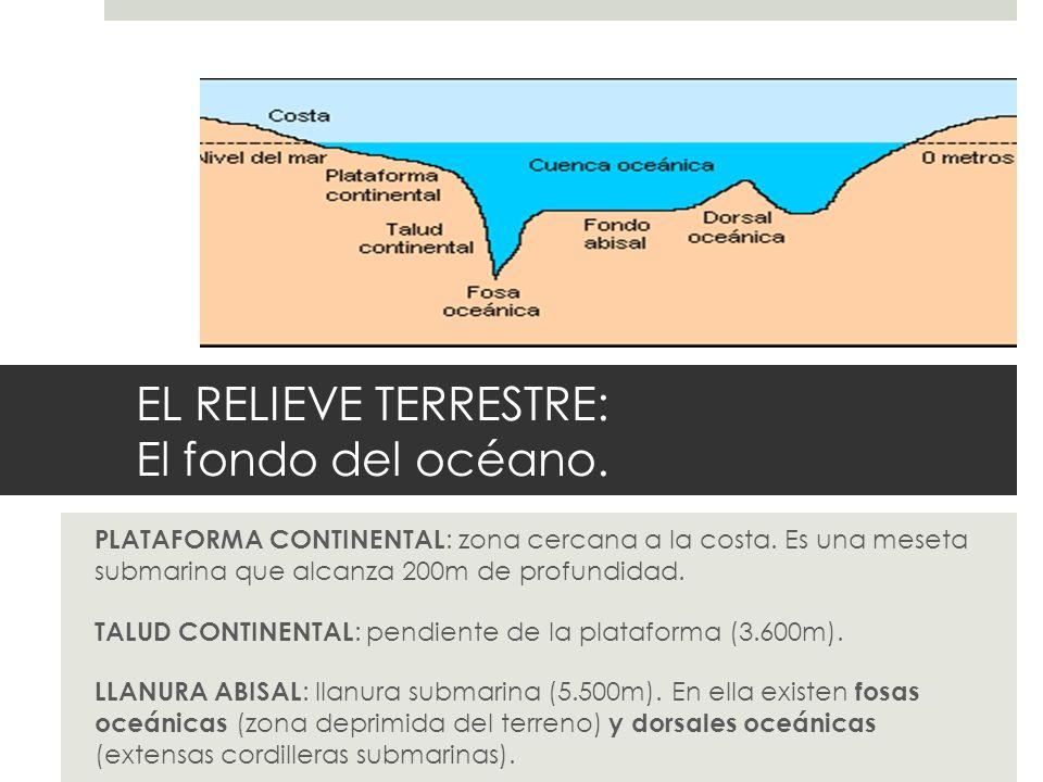 EL RELIEVE TERRESTRE: El fondo del océano. PLATAFORMA CONTINENTAL : zona cercana a la costa. Es una meseta submarina que alcanza 200m de profundidad.