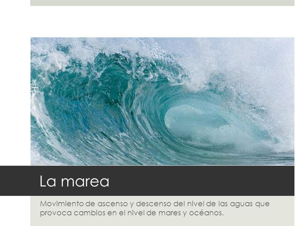 EL RELIEVE TERRESTRE: El fondo del océano.PLATAFORMA CONTINENTAL : zona cercana a la costa.