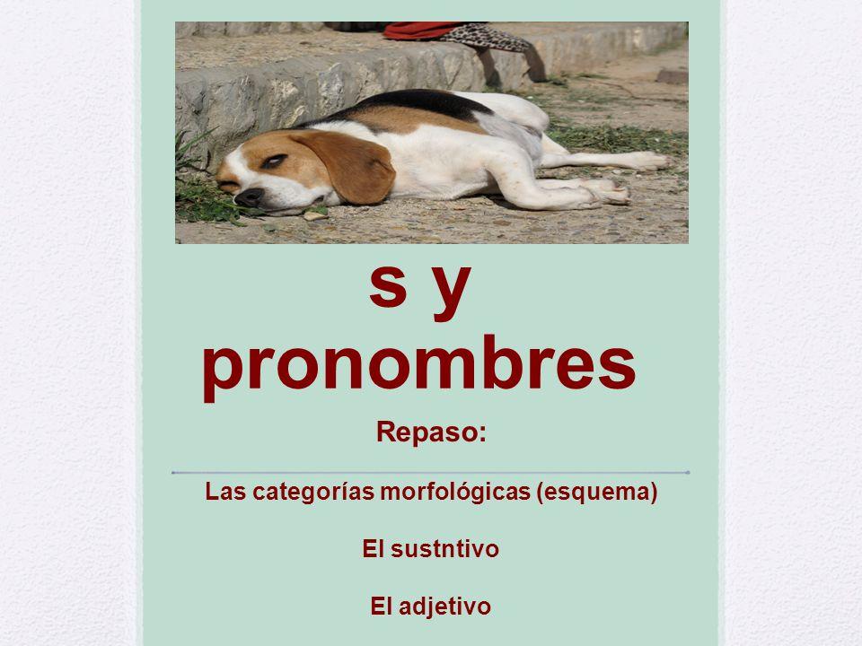Determinante s y pronombres Repaso: Las categorías morfológicas (esquema) El sustntivo El adjetivo