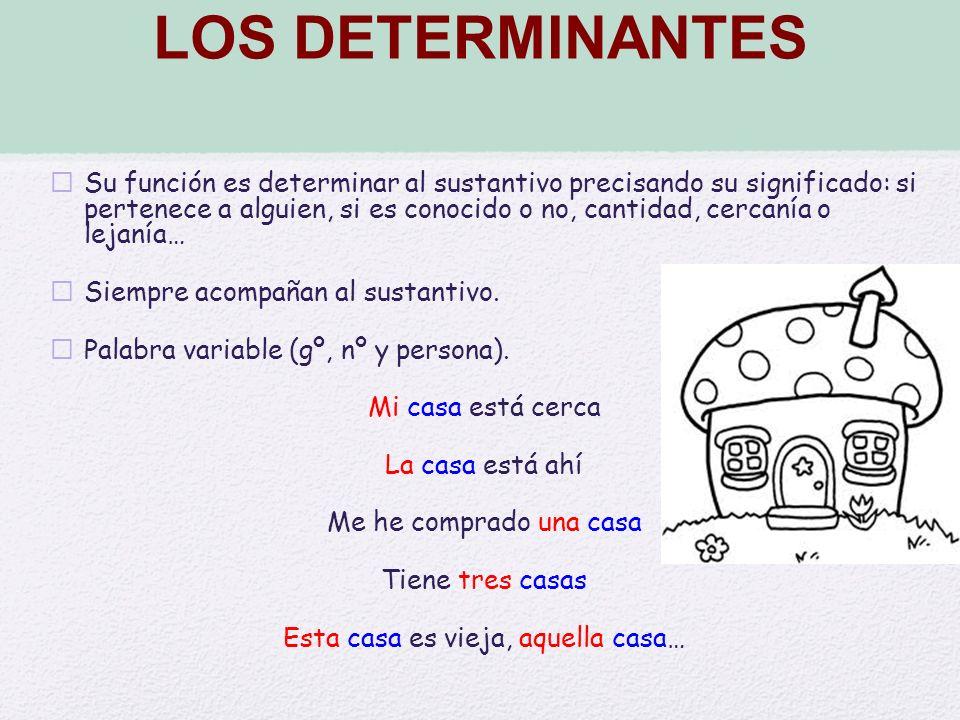 LOS DETERMINANTES Su función es determinar al sustantivo precisando su significado: si pertenece a alguien, si es conocido o no, cantidad, cercanía o