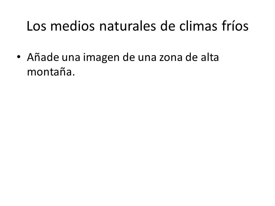 Los medios naturales de climas fríos Añade una imagen de una zona de alta montaña.