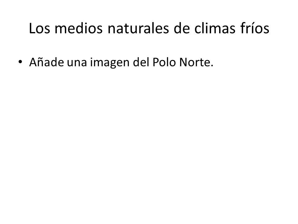 Los medios naturales de climas fríos Añade una imagen del Polo Norte.