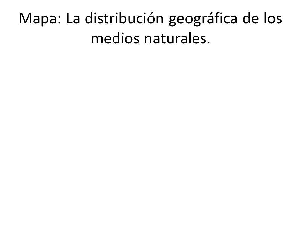 Los medios naturales de climas cálidos Añade una imagen de un bosque tropical.