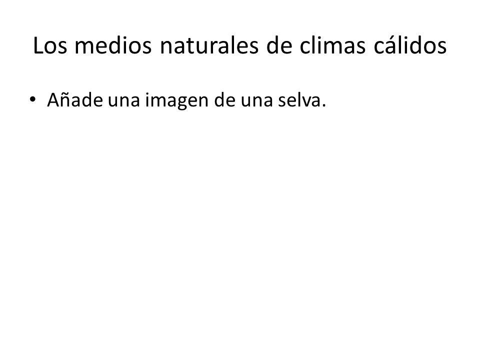 Los medios naturales de climas cálidos Añade una imagen de una sabana.