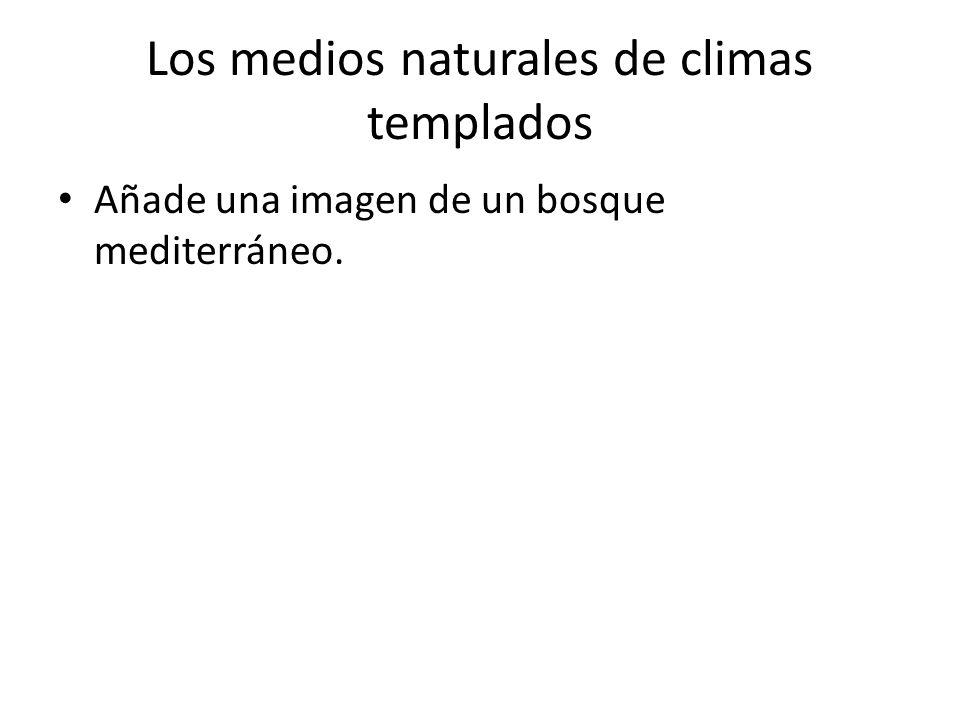 Los medios naturales de climas templados Añade una imagen de un bosque de tipo chino.