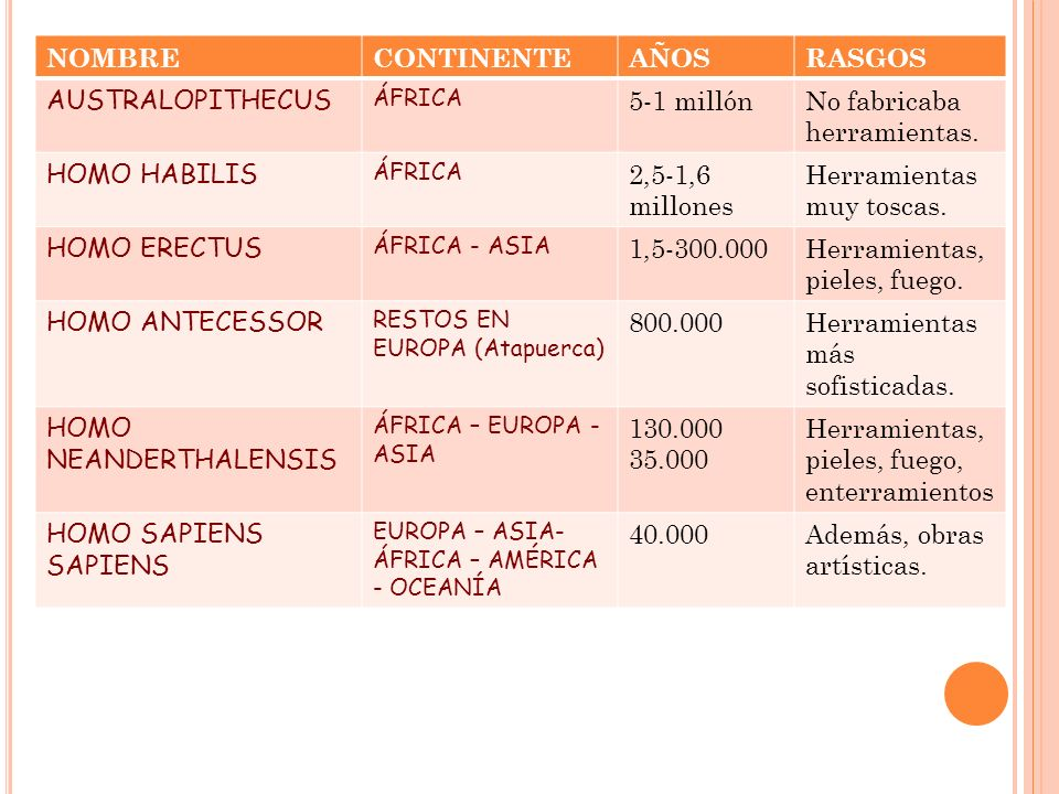 HERRAMIENTAS: HACHAS BIFACES LANZAS DE MADERA RAEDERAS HERRAMIENTAS: HACHAS BIFACES LANZAS DE MADERA RAEDERAS