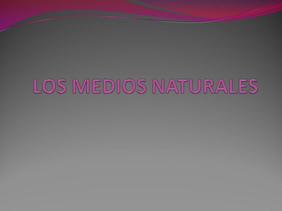 LOS MEDIOS NATURALES EN EL MUNDO TIPO DE CLIMAMEDIOS NATURALES Climas cálidosSituación: 30º-60º (norte y sur).