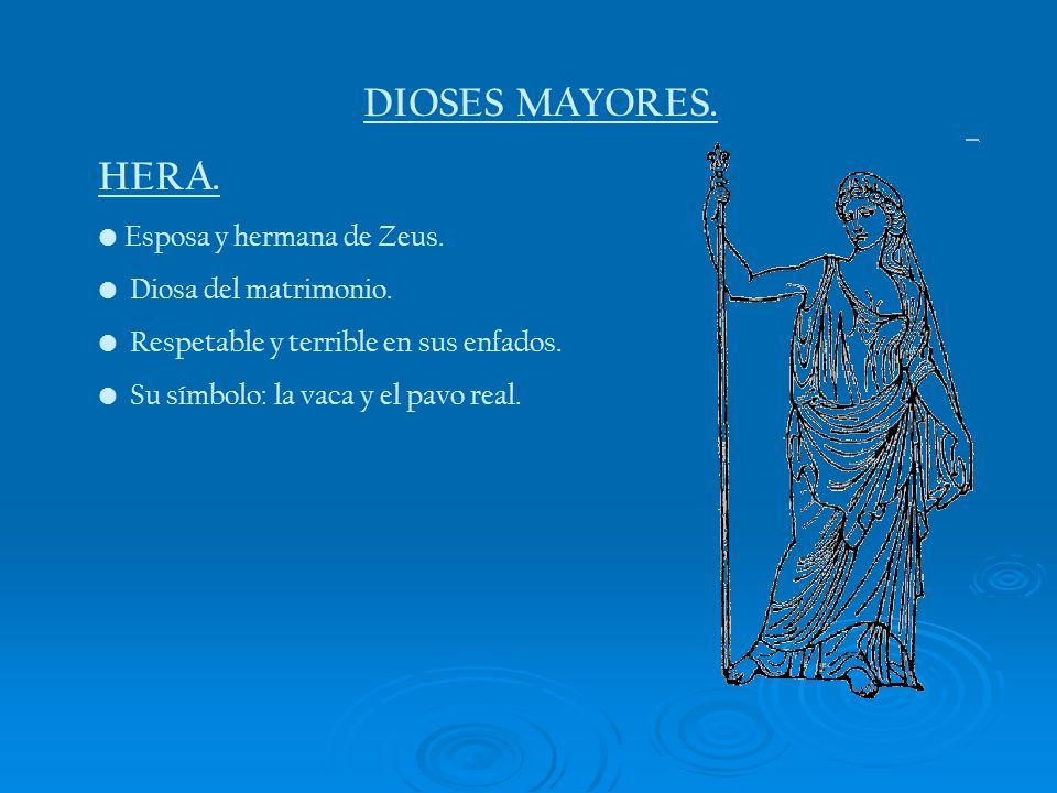 DIOSES MAYORES. HERA. Esposa y hermana de Zeus. Diosa del matrimonio. Respetable y terrible en sus enfados. Su símbolo: la vaca y el pavo real.