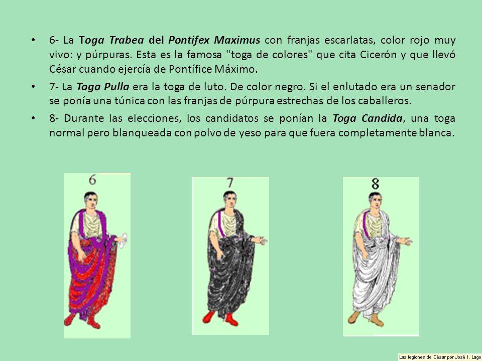 6- La Toga Trabea del Pontifex Maximus con franjas escarlatas, color rojo muy vivo: y púrpuras. Esta es la famosa
