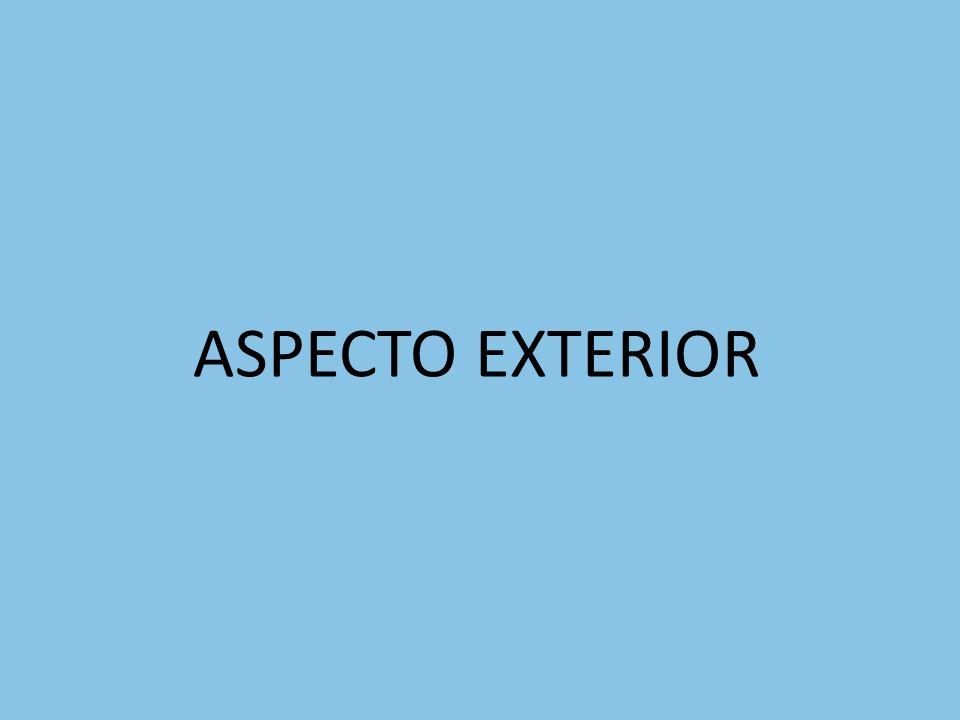 ASPECTO EXTERIOR