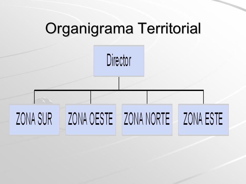 Organigrama por Productos o Servicios