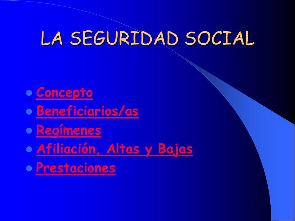 CONCEPTO La Seguridad Social es un sistema público cuyo objeto es la protección de las personas incluidas en su campo de aplicación y los familiares a su cargo, frente determinados riesgos o contingencias que les ocasionan situaciones de necesidad