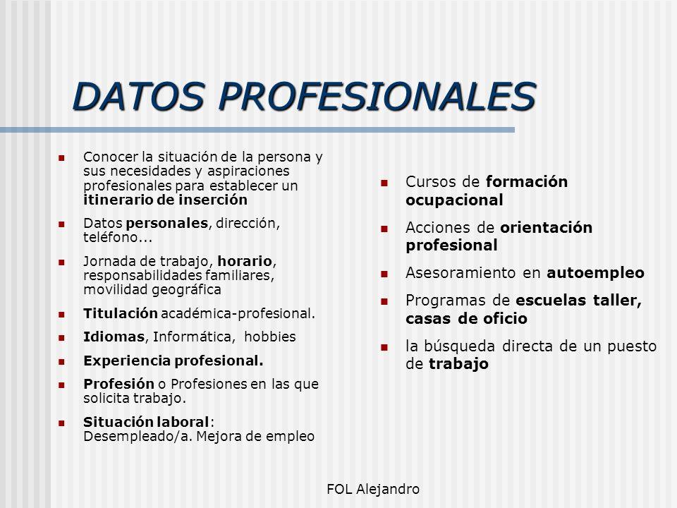 DATOS PROFESIONALES Conocer la situación de la persona y sus necesidades y aspiraciones profesionales para establecer un itinerario de inserción Datos