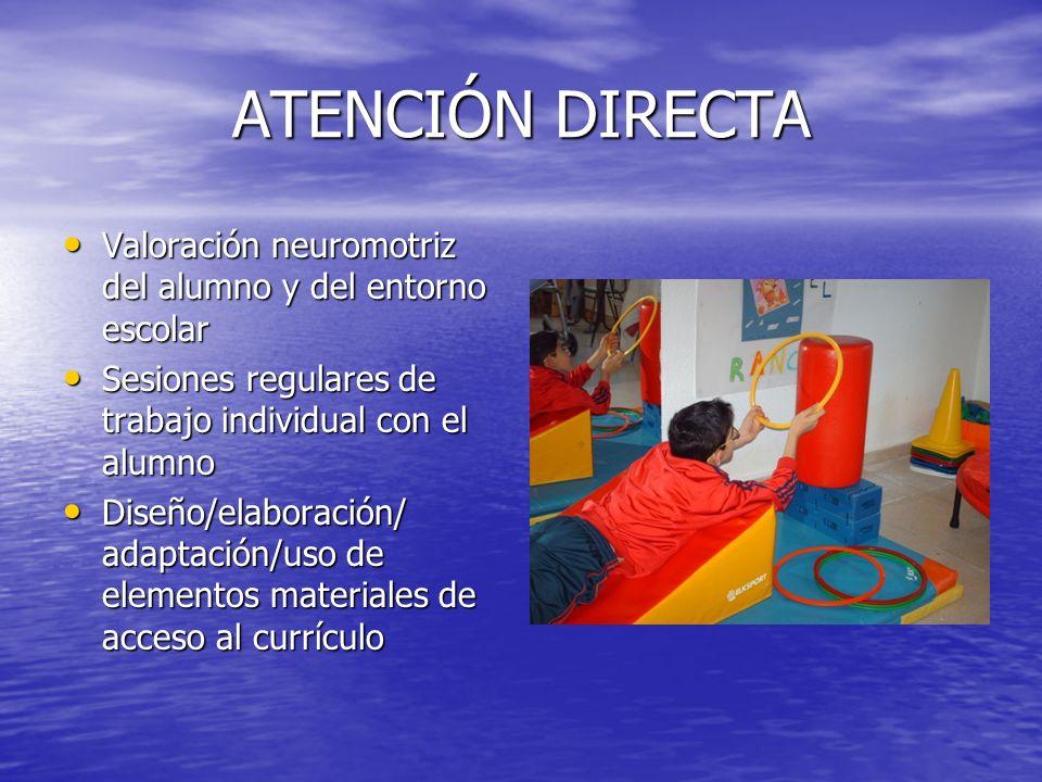 ATENCIÓN DIRECTA Valoración neuromotriz del alumno y del entorno escolar Valoración neuromotriz del alumno y del entorno escolar Sesiones regulares de