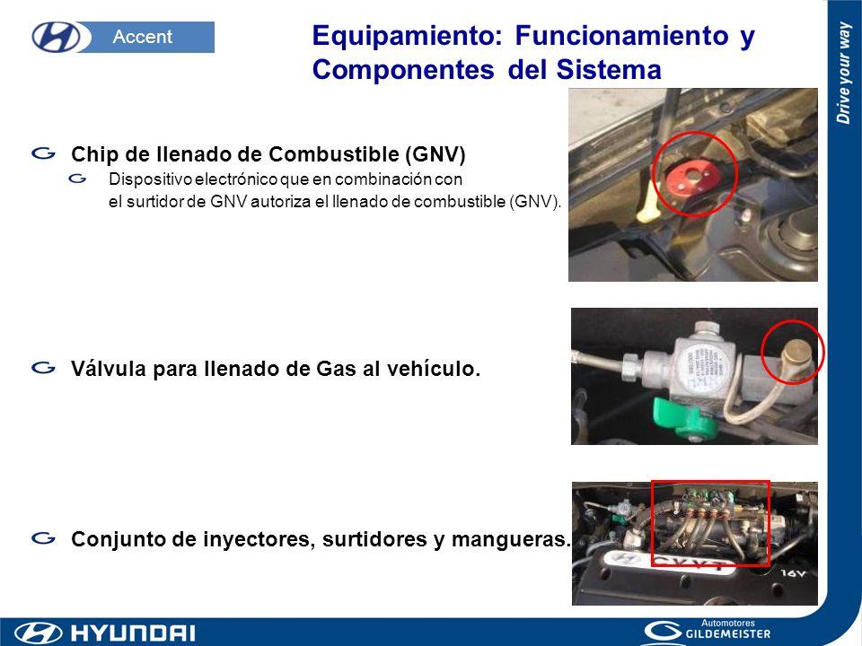 Chip de llenado de Combustible (GNV) Dispositivo electrónico que en combinación con el surtidor de GNV autoriza el llenado de combustible (GNV). Válvu