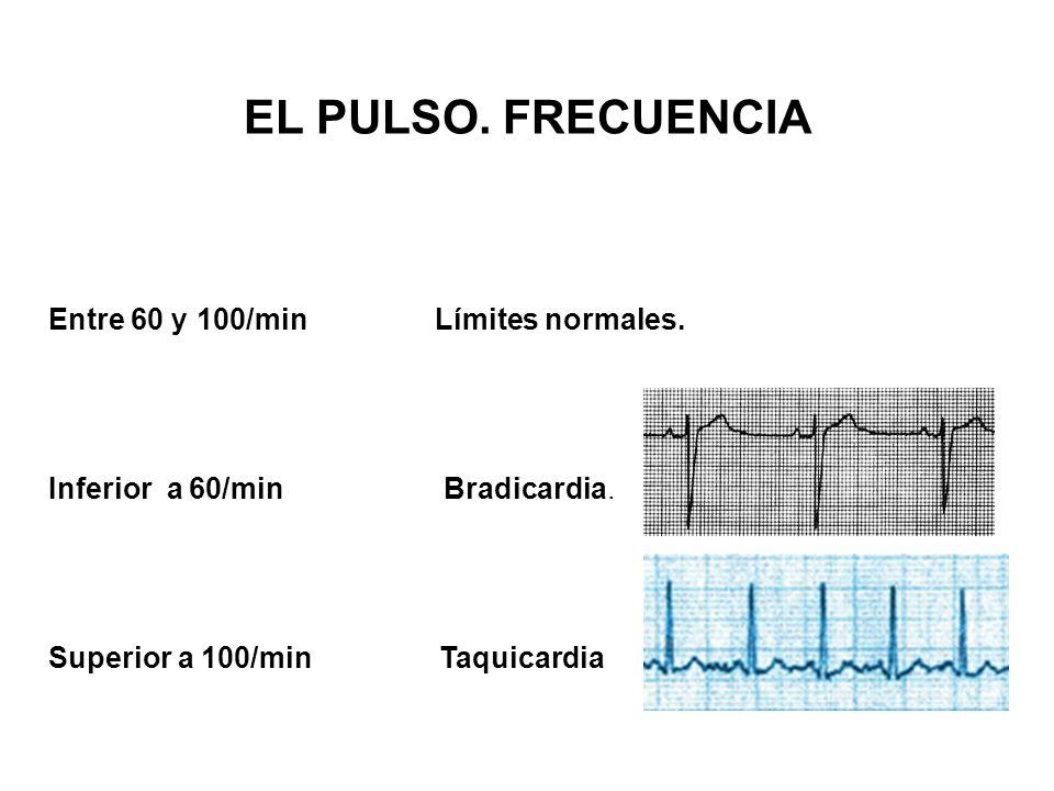 Entre 60 y 100/min Límites normales. Inferior a 60/min Bradicardia. Superior a 100/min Taquicardia Si es inferior a 60 EL PULSO. FRECUENCIA