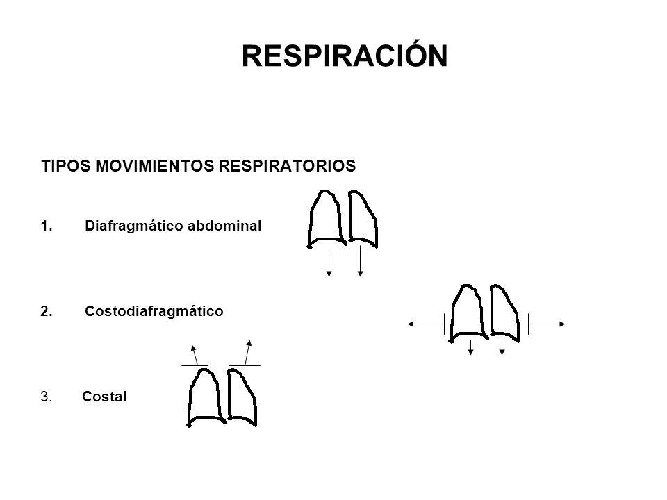 TIPOS MOVIMIENTOS RESPIRATORIOS 1.Diafragmático abdominal 2.Costodiafragmático 3. Costal RESPIRACIÓN