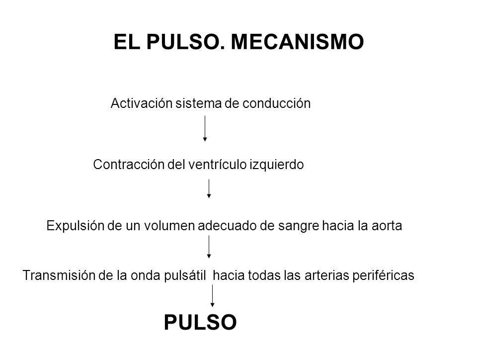 PULSO DICROTO: una forma de pulso en la que, apenas terminada la pulsación principal, Se percibe dos pulsos, uno principal y otro más leve despues.