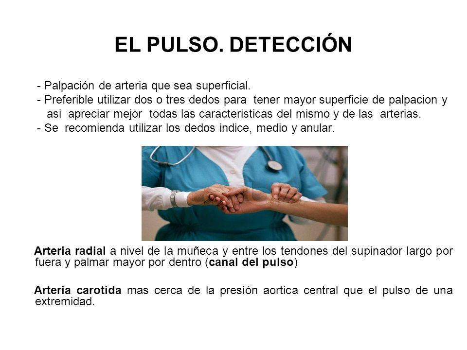 EL PULSO. DETECCIÓN.