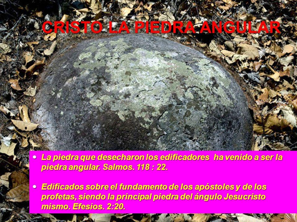 CRISTO LA PIEDRA ANGULAR La piedra que desecharon los edificadores ha venido a ser la piedra angular. Salmos. 118 : 22. La piedra que desecharon los e