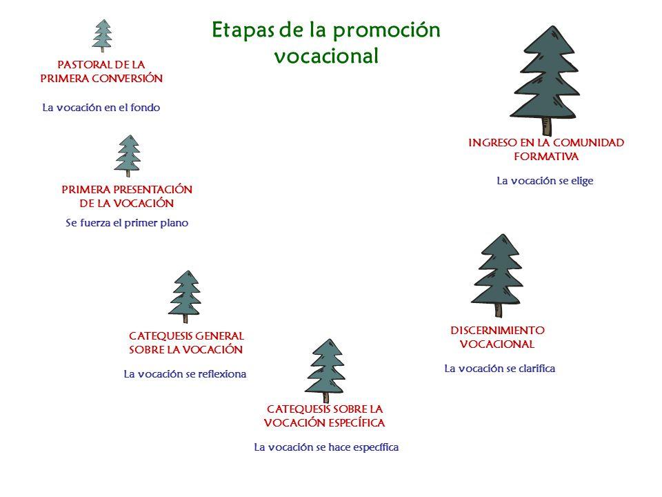 Etapas de la promoción vocacional PASTORAL DE LA PRIMERA CONVERSIÓN PRIMERA PRESENTACIÓN DE LA VOCACIÓN CATEQUESIS GENERAL SOBRE LA VOCACIÓN CATEQUESI