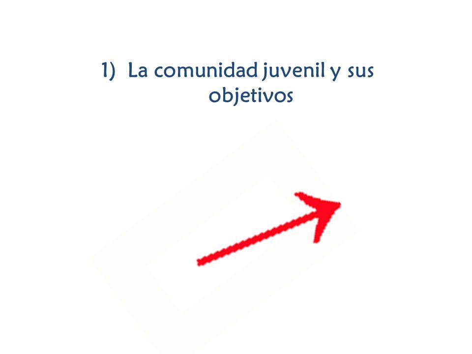 1)La comunidad juvenil y sus objetivos