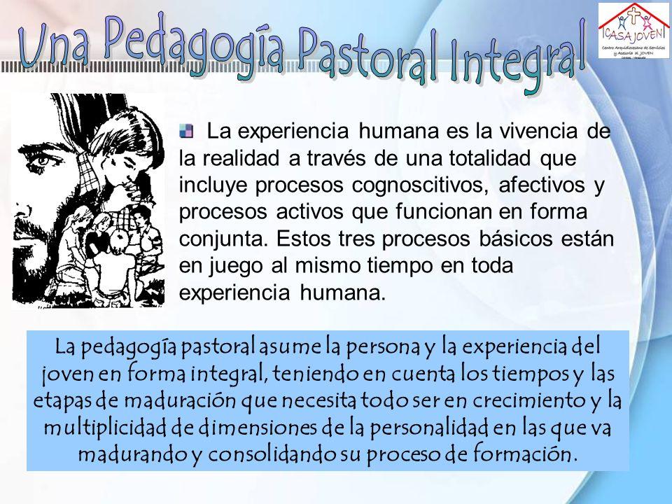 La pedagogía pastoral asume la persona y la experiencia del joven en forma integral, teniendo en cuenta los tiempos y las etapas de maduración que nec