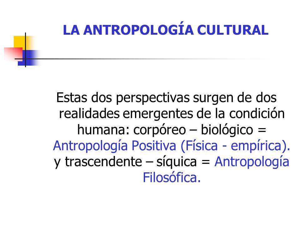 LA ANTROPOLOGÍA CULTURAL DIVISIONES DE LA ANTROPOLOGÍA CIENTÍFICA Antropología Física (Paleantología, Primatología, Genética, Antropometría.