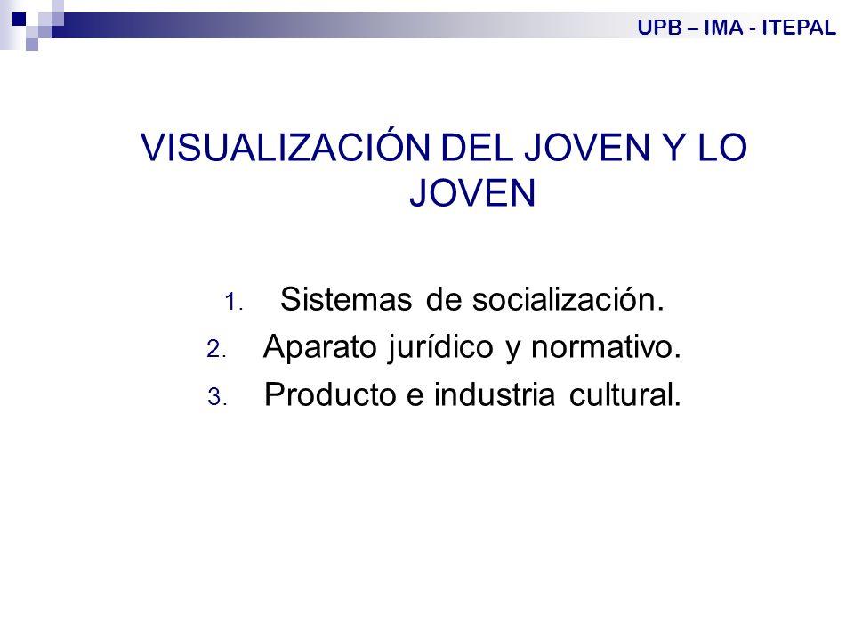 VISUALIZACIÓN DEL JOVEN Y LO JOVEN 1.Sistemas de socialización.