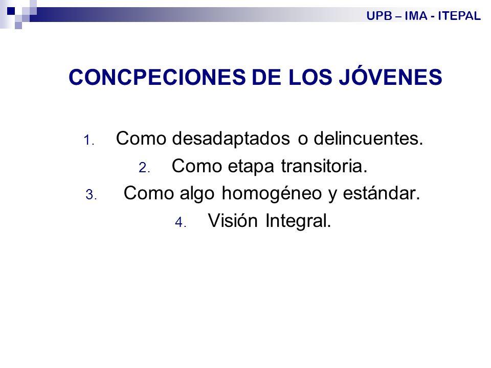 CONCPECIONES DE LOS JÓVENES 1.Como desadaptados o delincuentes.