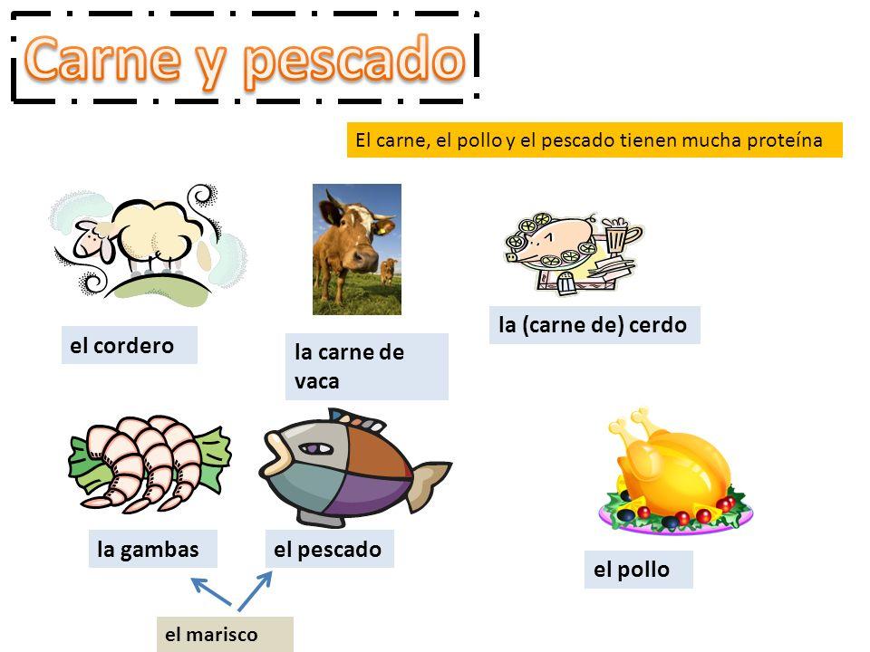 El carne, el pollo y el pescado tienen mucha proteína el cordero la carne de vaca la (carne de) cerdo el pollo el pescadola gambas el marisco