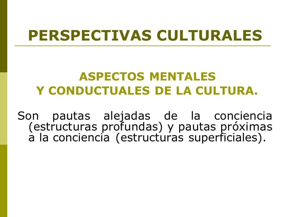 PERSPECTIVAS CULTURALES ASPECTOS MENTALES Y CONDUCTUALES DE LA CULTURA. Son pautas alejadas de la conciencia (estructuras profundas) y pautas próximas