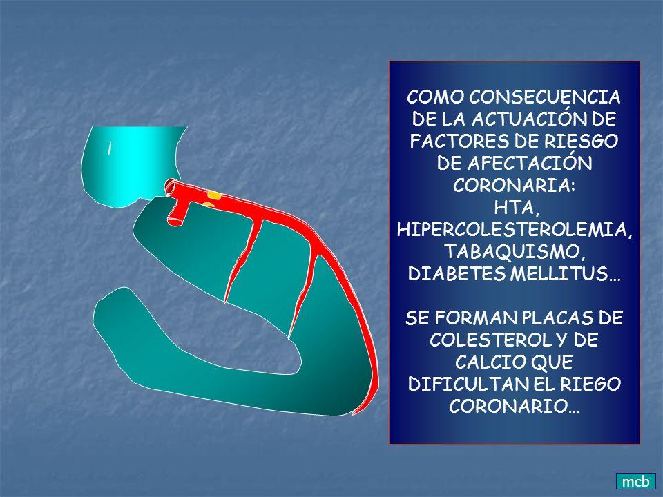 O LO INTERRUMPEN… PRODUCIENDO UN INFARTO DE MIOCARDIO Obstrucción coronaria por placas de colesterol interrumpiendo el flujo coronario Infarto de miocardio