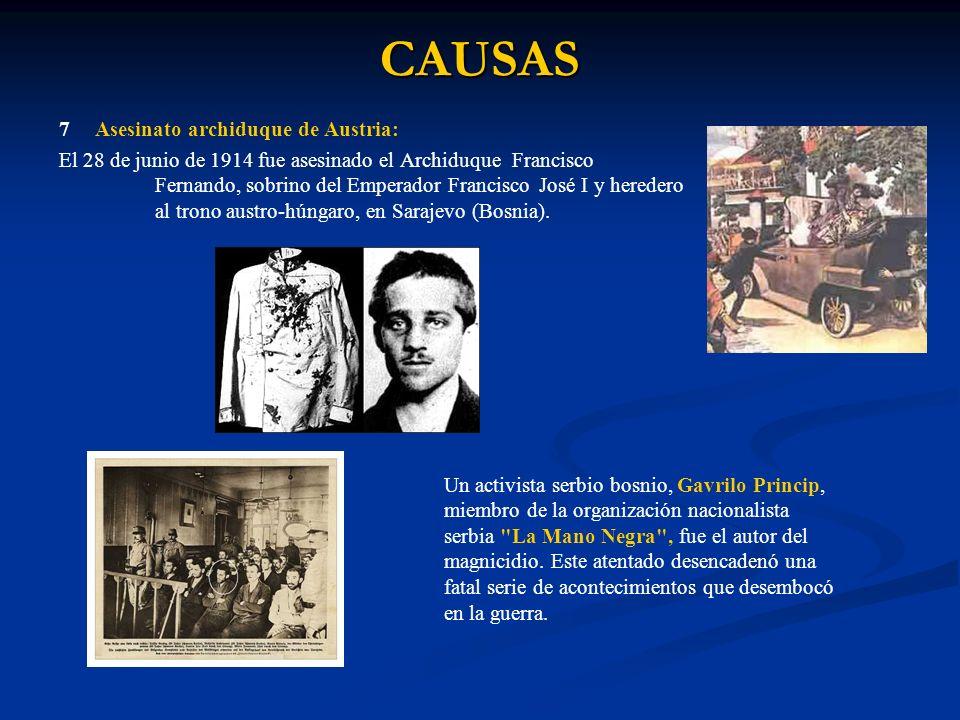 CAUSAS 7Asesinato archiduque de Austria: El 28 de junio de 1914 fue asesinado el Archiduque Francisco Fernando, sobrino del Emperador Francisco José I y heredero al trono austro-húngaro, en Sarajevo (Bosnia).