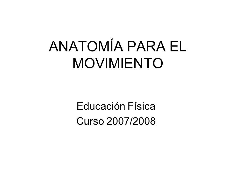 ANATOMÍA PARA EL MOVIMIENTO Educación Física Curso 2007/2008