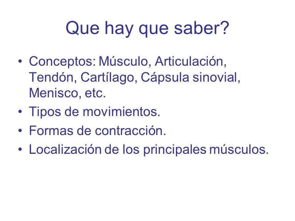 Que hay que saber? Conceptos: Músculo, Articulación, Tendón, Cartílago, Cápsula sinovial, Menisco, etc. Tipos de movimientos. Formas de contracción. L