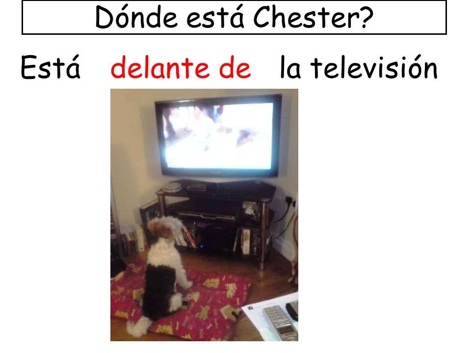 delante deEstála televisión Dónde está Chester?