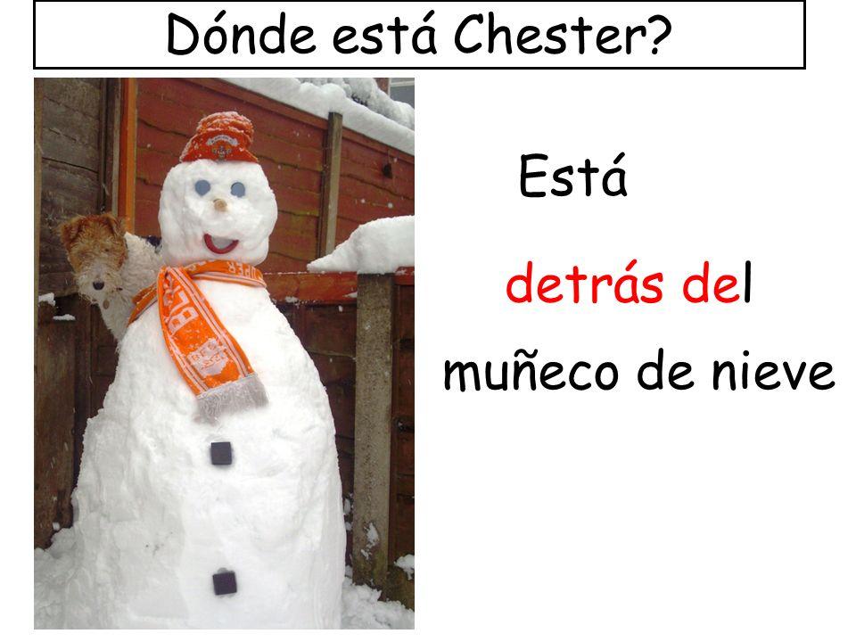 detrás del Está muñeco de nieve Dónde está Chester?