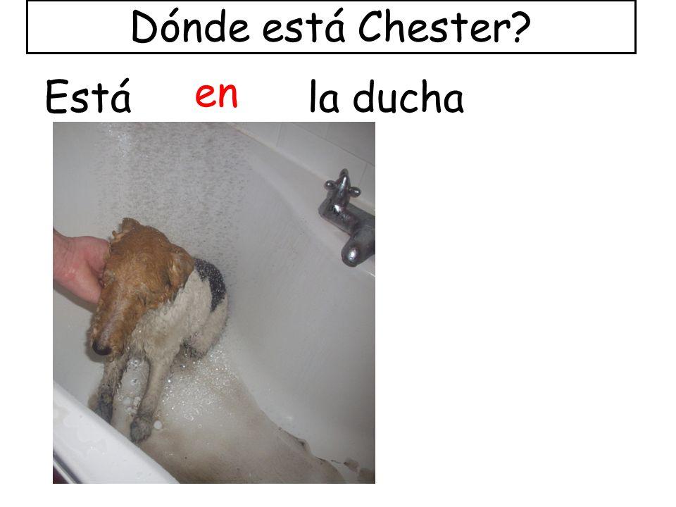 Está entre la puerta y la escalera. Dónde está Chester?