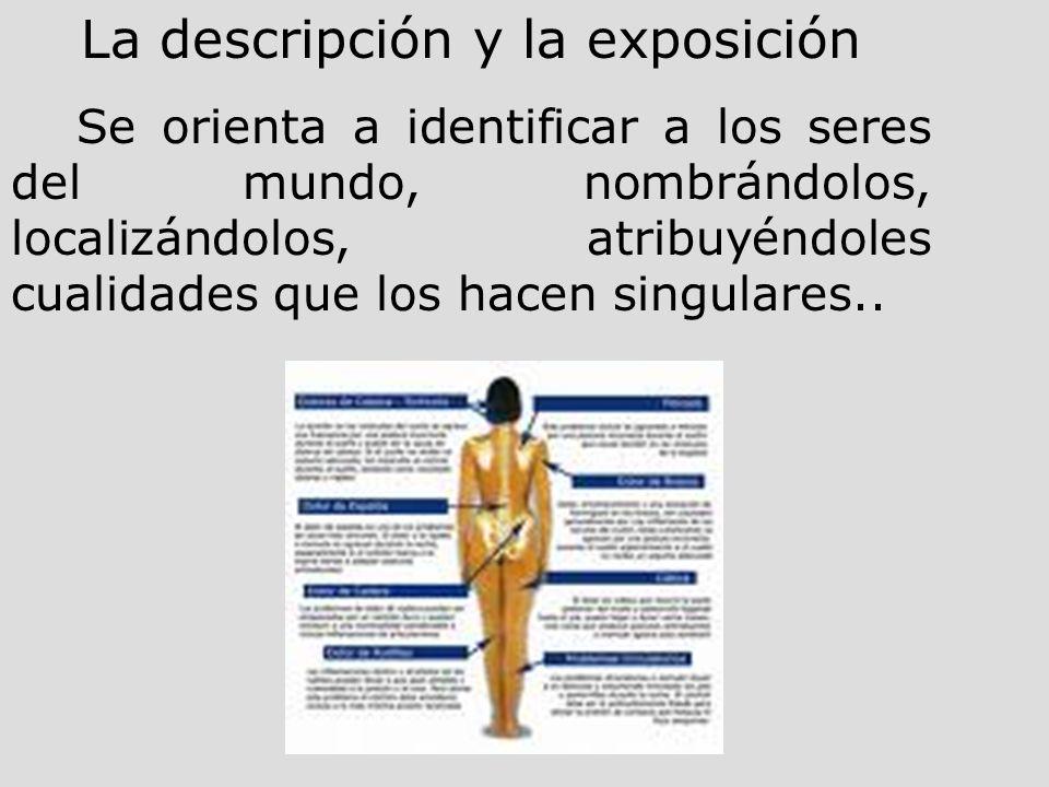 La descripción y la exposición Se orienta a identificar a los seres del mundo, nombrándolos, localizándolos, atribuyéndoles cualidades que los hacen s