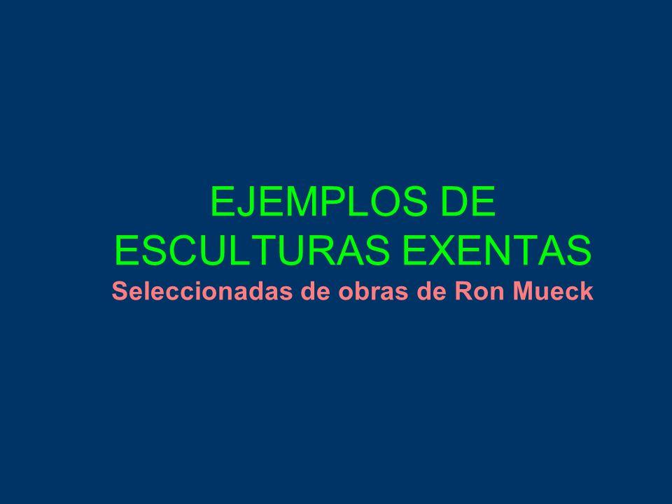 EJEMPLOS DE ESCULTURAS EXENTAS Seleccionadas de obras de Ron Mueck