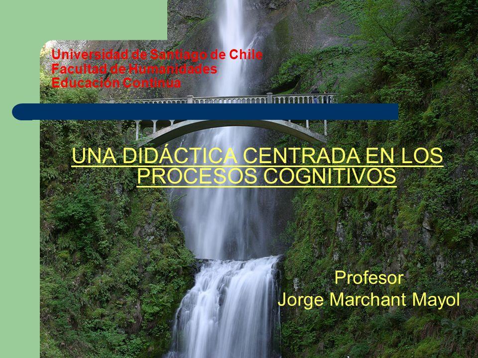 Universidad de Santiago de Chile Facultad de Humanidades Educación Continua UNA DIDÁCTICA CENTRADA EN LOS PROCESOS COGNITIVOS Profesor Jorge Marchant