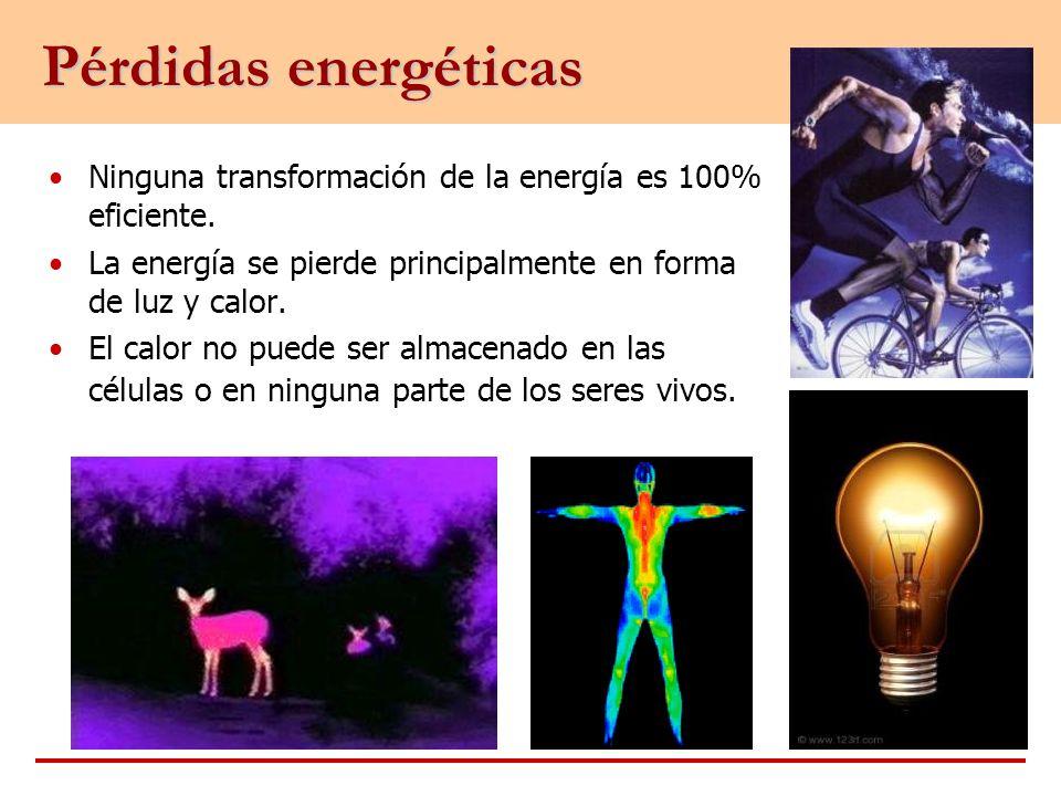Ninguna transformación de la energía es 100% eficiente. La energía se pierde principalmente en forma de luz y calor. El calor no puede ser almacenado