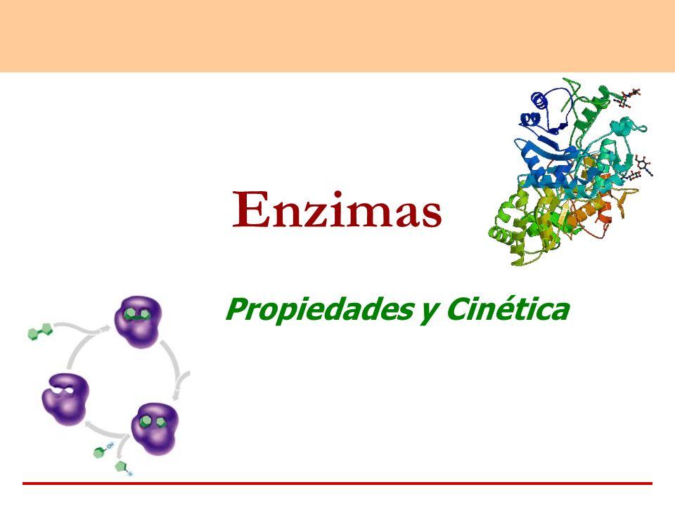 Enzimas Propiedades y Cinética