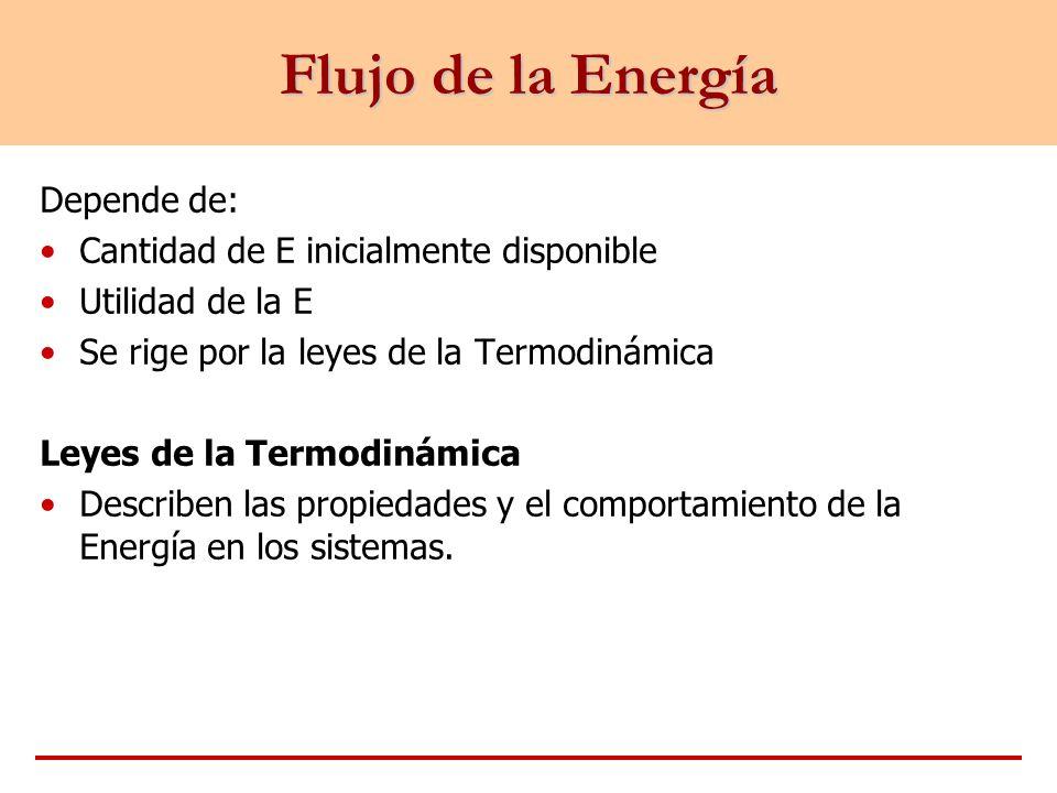Flujo de la Energía Depende de: Cantidad de E inicialmente disponible Utilidad de la E Se rige por la leyes de la Termodinámica Leyes de la Termodinám