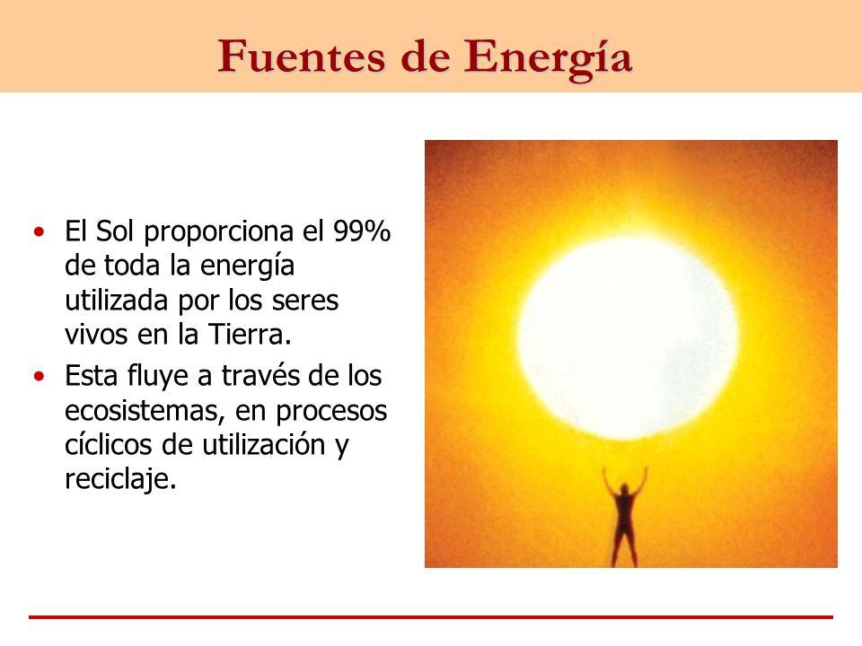 Fuentes de Energía El Sol proporciona el 99% de toda la energía utilizada por los seres vivos en la Tierra. Esta fluye a través de los ecosistemas, en