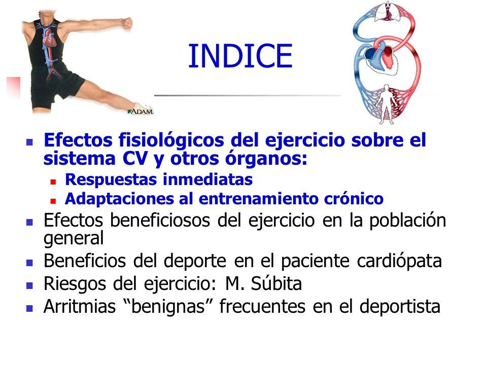 INDICE Efectos fisiológicos del ejercicio sobre el sistema CV y otros órganos: Respuestas inmediatas Adaptaciones al entrenamiento crónico Efectos ben