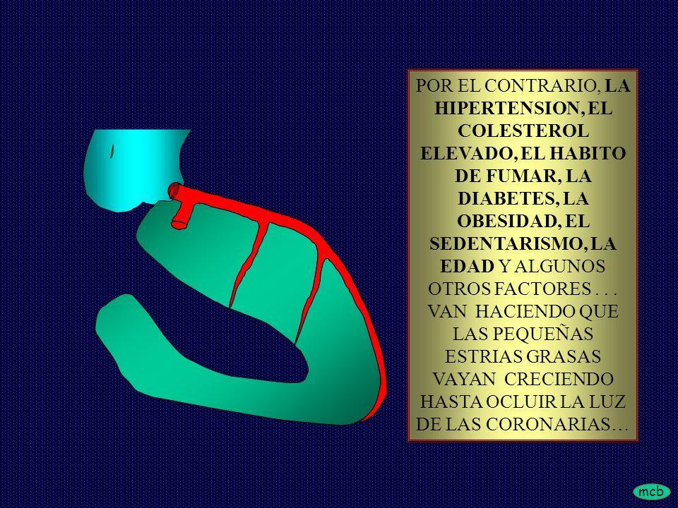 mcb POR EL CONTRARIO, LA HIPERTENSION, EL COLESTEROL ELEVADO, EL HABITO DE FUMAR, LA DIABETES, LA OBESIDAD, EL SEDENTARISMO, LA EDAD Y ALGUNOS OTROS FACTORES...